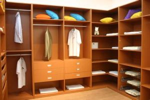 Custom Made Walking Closet (ZH-088) pictures & photos