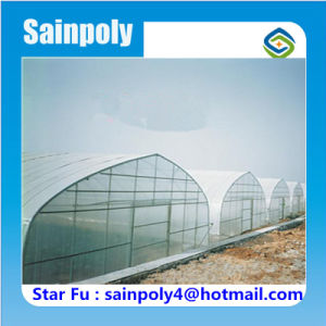 Agricultural Used Tunnel Greenhouse for Watermelon pictures & photos