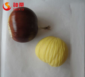 Organic Fresh Chestnuts for Sale 2014 Best Sell Chestnuts