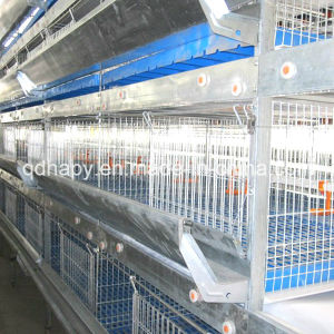 H Type Chicken Battery Cage Feeding System for Broiler pictures & photos