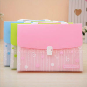 Fashion Design 6 Pockets Expanding File Add File Box