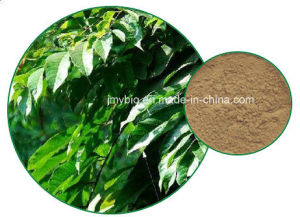 Hot Sell Oleuropein 20%-60% Olive Leaf Extract pictures & photos