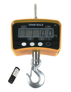 CE Electronic Weighing Crane Scale pictures & photos