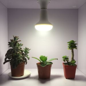 High Quality LED Grow Bulb for Potted Plants pictures & photos