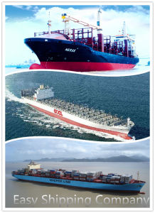 Consolidate Shipping Service From China to Georgetown, Guyana
