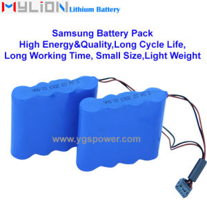 Hight Quality Lithium Battery for Patient Monitor Infusion Pump etc. 11.1V4.4ah