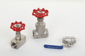 Stainless Steel Valve with High Quality