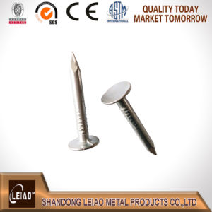 Galvanized Clout Nail Best Quality pictures & photos