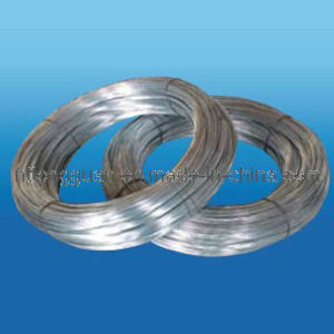 Tongguan Electro Galvanized Steel Wire pictures & photos