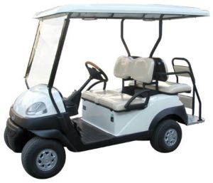 3kw Golf Car Repow 418gsb2 pictures & photos