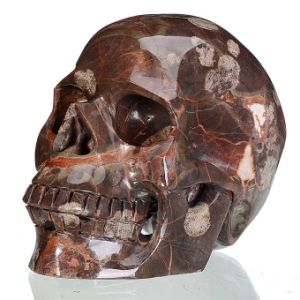 Natural Red Ryolite Stone Crystal Human Skull Carving Sculpture Decor 11b31
