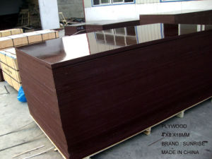 Concrete Formwork Film Faced Plywood/Reclye Used