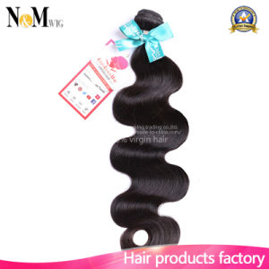 Clean Weft No Lice Darling Hair/ Raw Human Hair (QB-MVRH-BW) pictures & photos