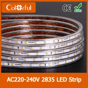 Hot High Lumens AC220V SMD2835 LED Flex Strip pictures & photos