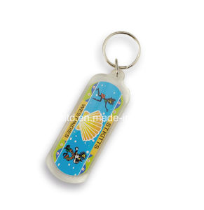Plastic Promotional Keychain for Premium pictures & photos