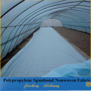 Biodegradable Spunbond Non Woven Polypropylene Fabric for Agriculture