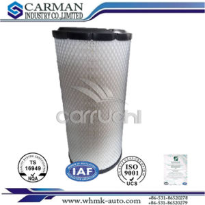 Donaldson Air Filter Replacemant P828889 P829333 for Cat, Kumatsu, John Deere, Jcb pictures & photos