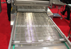 Ladder Belt (Wire Mesh Conveyor Belt) pictures & photos