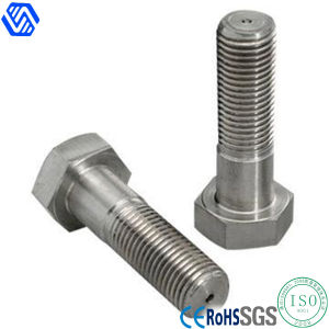 Stainless Steel Hexagon Head Bolt pictures & photos