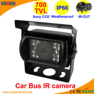 Weatherproof Sony 800tvl IR Vehicle Car Bus Camera pictures & photos
