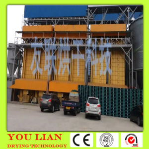 Hot Sale Seed Drying Machinery pictures & photos