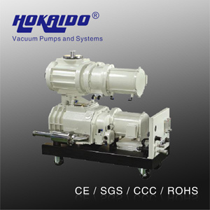 Vacuum Forming Machine Hokaido Dry Screw Vacuum Pump (RSE2602)