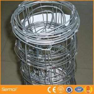 Galvanized Sheep Wire Fence Direct Factory pictures & photos