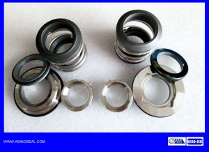 OEM Mechanical Seal as-92D-32mm Replace AES P07