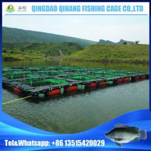 Aquaculture Fish Cage Farming with PE Nylon Net pictures & photos