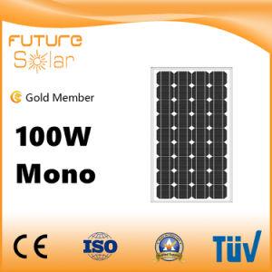 10 Yrs Warranty 100W Mono Solar Panel for Solar Homes