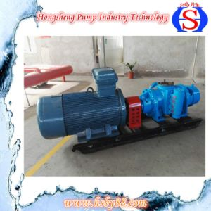 Stainless Steel High Pressure Rotary Gear Lobe Pump pictures & photos