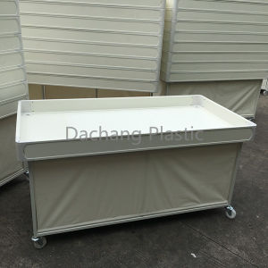 PVC Profile for Wagon Bottom Board pictures & photos