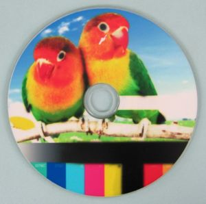 Wholesale Cheap White Inkjet Printable Blank CD-R 700MB 80min 52X pictures & photos