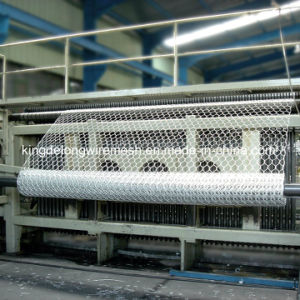 Hot Dipped Galvanized Hexagonal Wire Netting (kdl-140) pictures & photos
