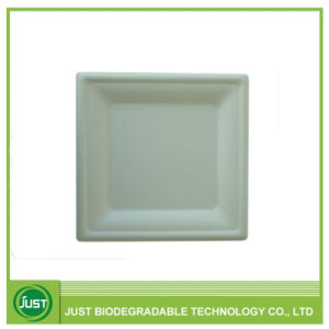 Disposable Compostable Square Paper Plate 10u2032  sc 1 st  Made-in-China.com : square paper plate - pezcame.com