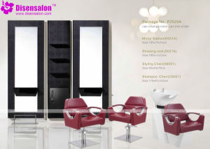 Popular High Quality Salon Furniture Shampoo Barber Salon Chair (P2029A)