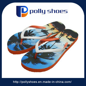 b5695e4bf One Dollar Printed China Special Flip Flop - China One Dollar Flip ...