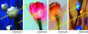 LED Natural Dried Flower