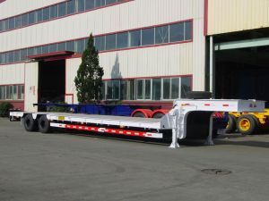 Low Bed Semi Trailer (TJ9370TD)