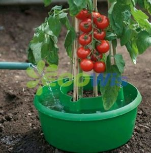 Containers to Grow Tomatoes, Tomato Grow Pot pictures & photos