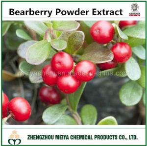 Wild Bearberry Powder Extract with 99% Alpha Arbutin and Ursolic Acid Assay pictures & photos