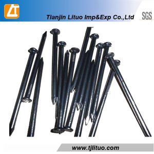 Top Quality Black Common Nails for Export Fron Tianjin China pictures & photos