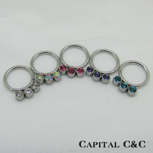 316L Hinged Clicker Segments Rings with Gem Stones (DS012)