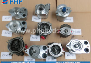 Replacement All Kinds of Hydraulic Gear Pump A8vo K3V Pilot Pump Charge Pumps pictures & photos