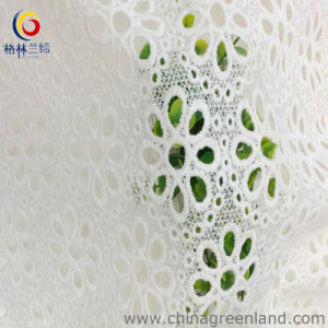 Micro Fiber Polyester Fabric Embroidery for Dress (GLLML037) pictures & photos