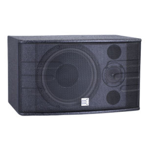 PA Systems 10 Inch Karaoke Audio Speaker pictures & photos
