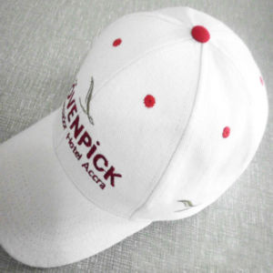 Custom Baseball Hat/Promotion Baseball Cap