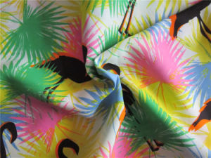Printed Polyester Chiffen Fabric with Spandex (XSC005) pictures & photos