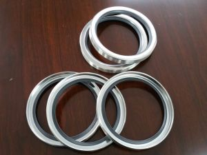 Ss Oil Seal, Ss PTFE Oil Seal, Stainless Steel Oil Seal pictures & photos