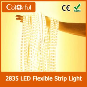 Hot DC12V SMD2835 Cuttable LED Strip Light pictures & photos